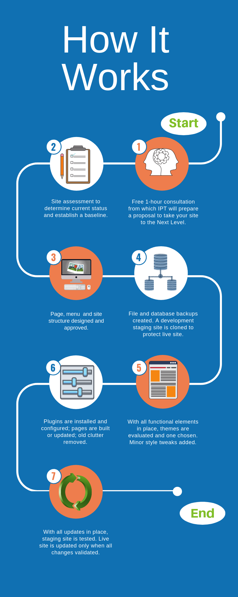 Next Level WordPress infographic outlining process.